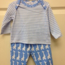 Blue Giraffe Set