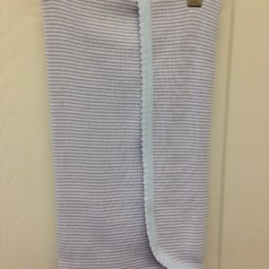 gray stripe blanket w blue trim