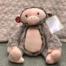 Peaceful Jungle Monkey